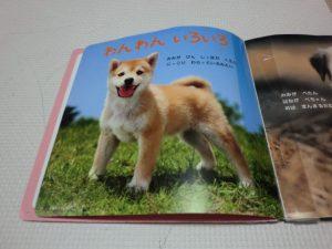 picture_book3