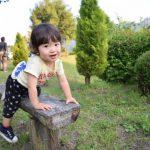 2歳~2歳6か月の体と言葉の発達について
