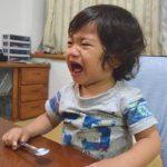【月齢別】発達にあった2歳児(男の子)の「おもちゃ」おすすめランキング