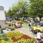NHK「あさいち」で紹介!子育てしやすい街「流山市」の実力