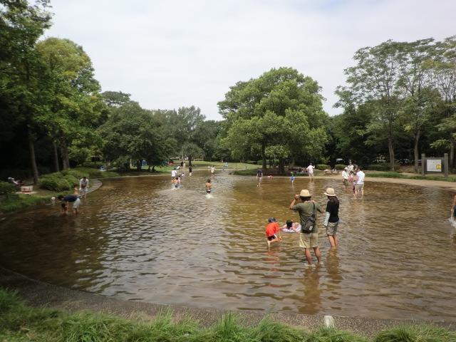 香澄公園のじゃぶじゃぶ池で水遊びをしたらこうなった