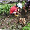 家庭菜園を始めてみよう! 「土作り」に関する基礎知識