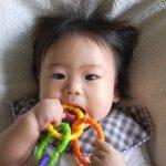「歯固め」おすすめ10選―赤ちゃんの噛む力を育てる―