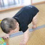 生後8ヶ月の赤ちゃんの生活リズム