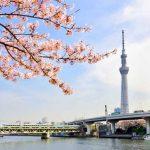 2018年待機児童数ランキング【東京都の市区町村】―ゼロからワーストまで―