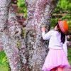 女の子のかわいいポシェット【10選】2歳頃から楽しめる!
