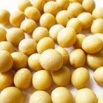 豆のお菓子【おすすめ10選】