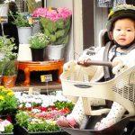 自転車用チャイルドシート【おすすめ10選】前乗せ・後ろ乗せタイプ別