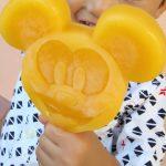 0歳と3歳を連れて東京ディズニーランドへ行ってみた。