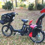 いつから赤ちゃんと自転車に乗れるのか?